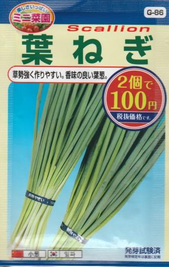 100均の種『葉ねぎ』 品種名: 岩槻 コスト: ¥54